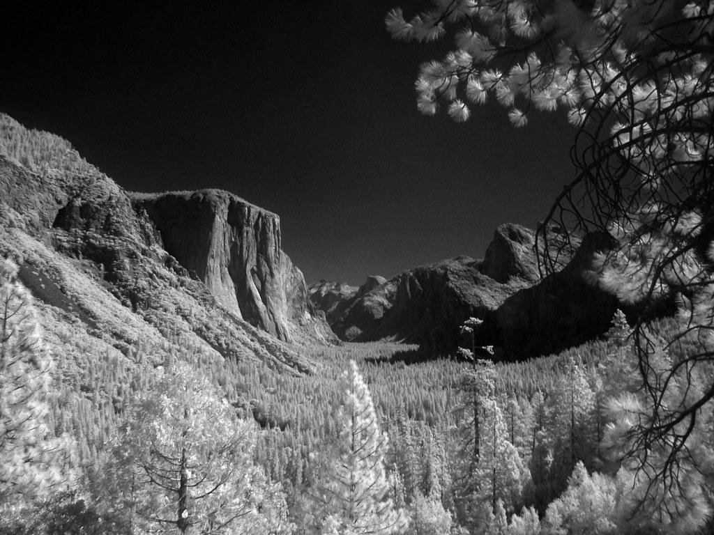 wrotniak net: Infrared Photography with a Digital Camera
